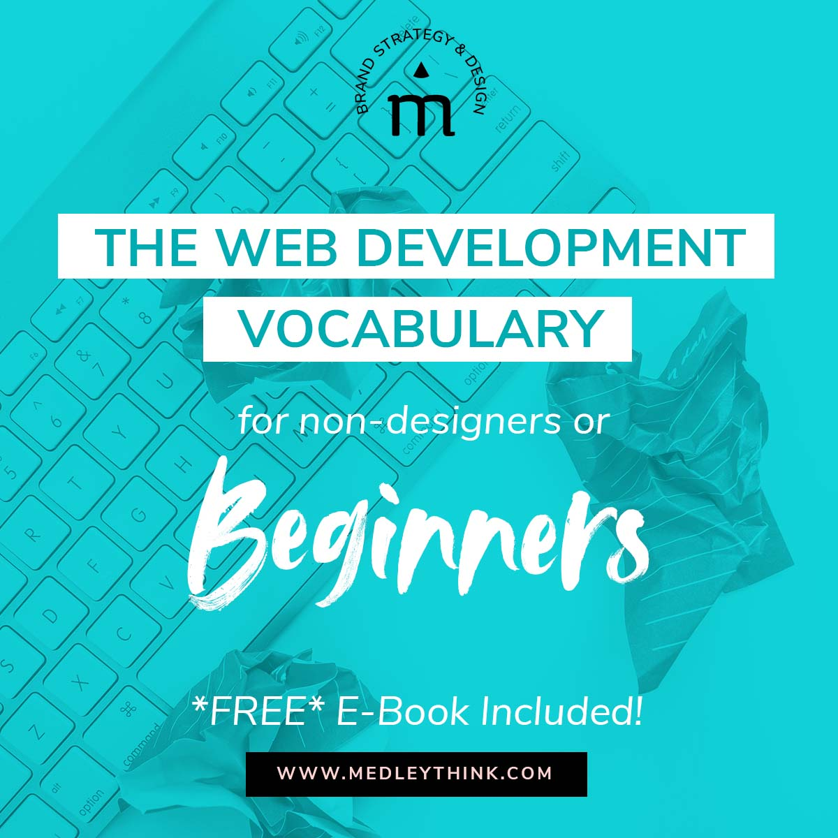 Are you DIYing your website or working with a designer/developer for the first time? We are here to help! Learn the web development lingo and download our *FREE* e-book! #webdevelopment #webdite #webdesign #diywebsite